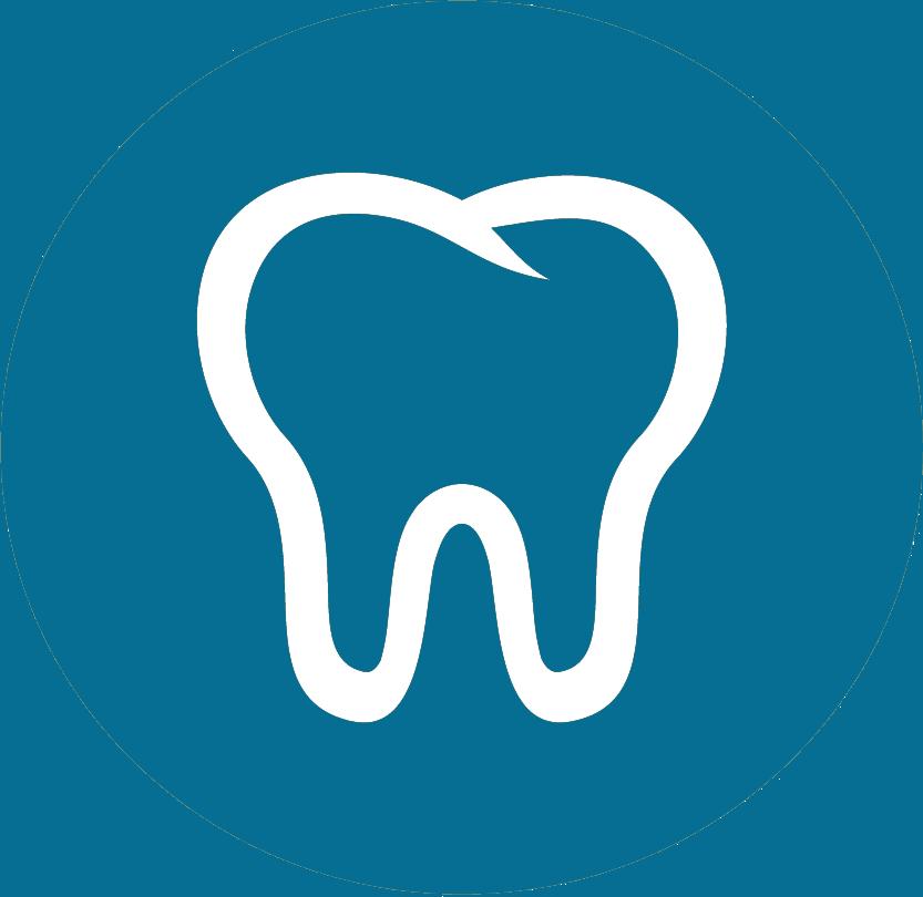 치과 / 의치