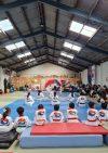 정무태권도(Jeong mu taekwondo)